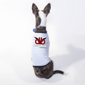 DirtyBird-Dog-Apparel